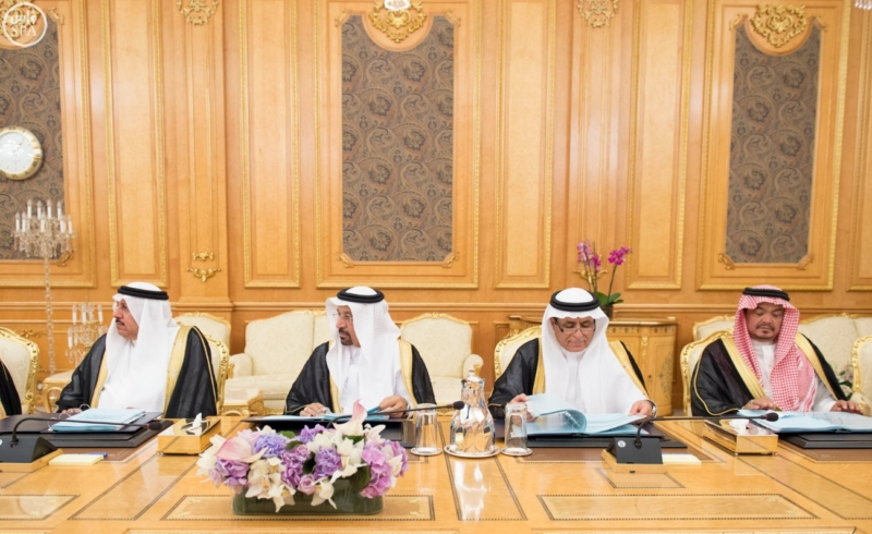 الملك يرأس جلسة مجلس الوزراء9