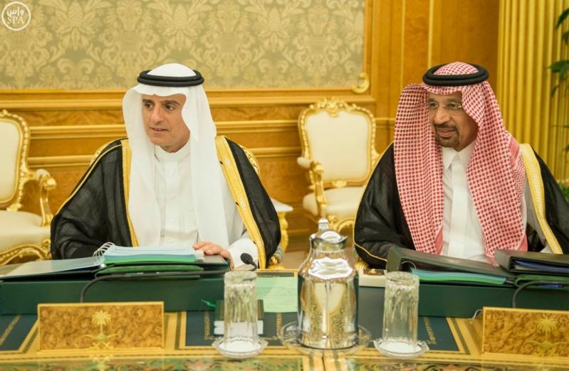 الملك يرأس مجلس الوزراء11