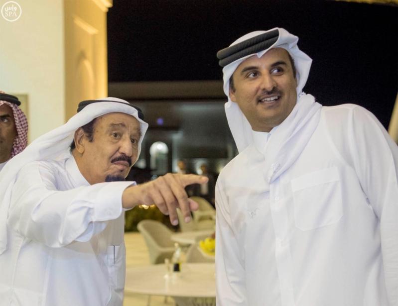الملك يستقبل أمير قطر (8)