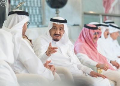 الملك يستقل ولي عهد أبو ظبي3