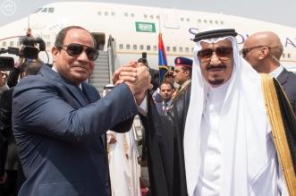 شاهد.. لقطة معبرة لخادم الحرمين والسيسي في أرض المطار - المواطن