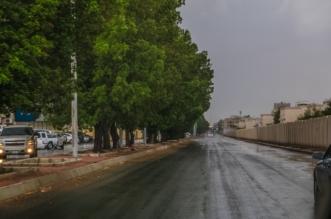 توقع بزخات من الأمطار على مناطق سعودية - المواطن