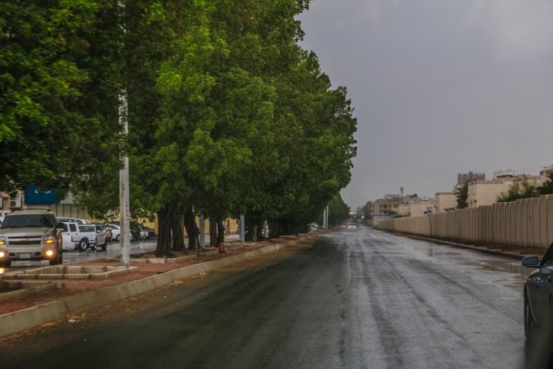المواطن توثق أمطار جدة (206026979)  
