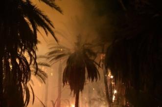 حريق يلتهم خمس مزارع للنخيل بدومة الجندل - المواطن