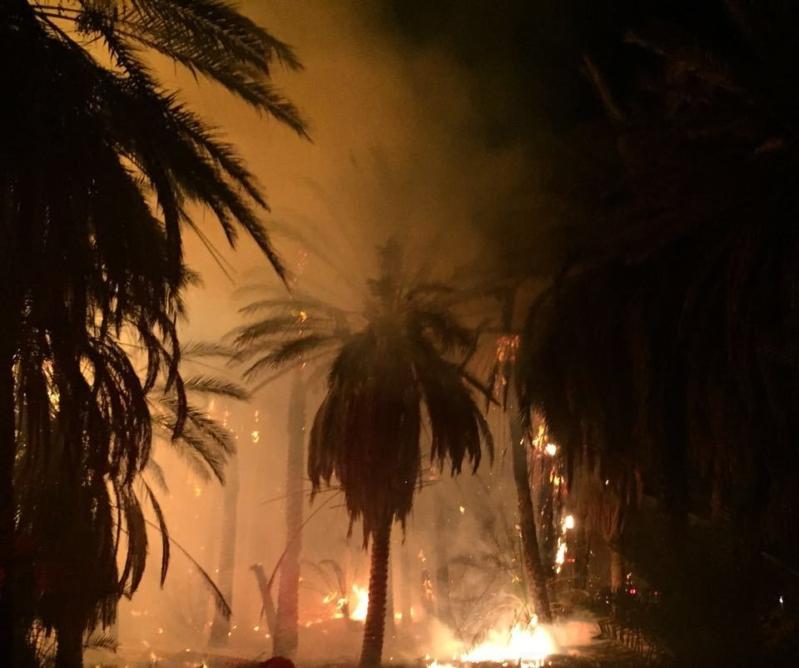 النيران تلتهم خمس مزارع للنخيل بدومة الجندل (1)