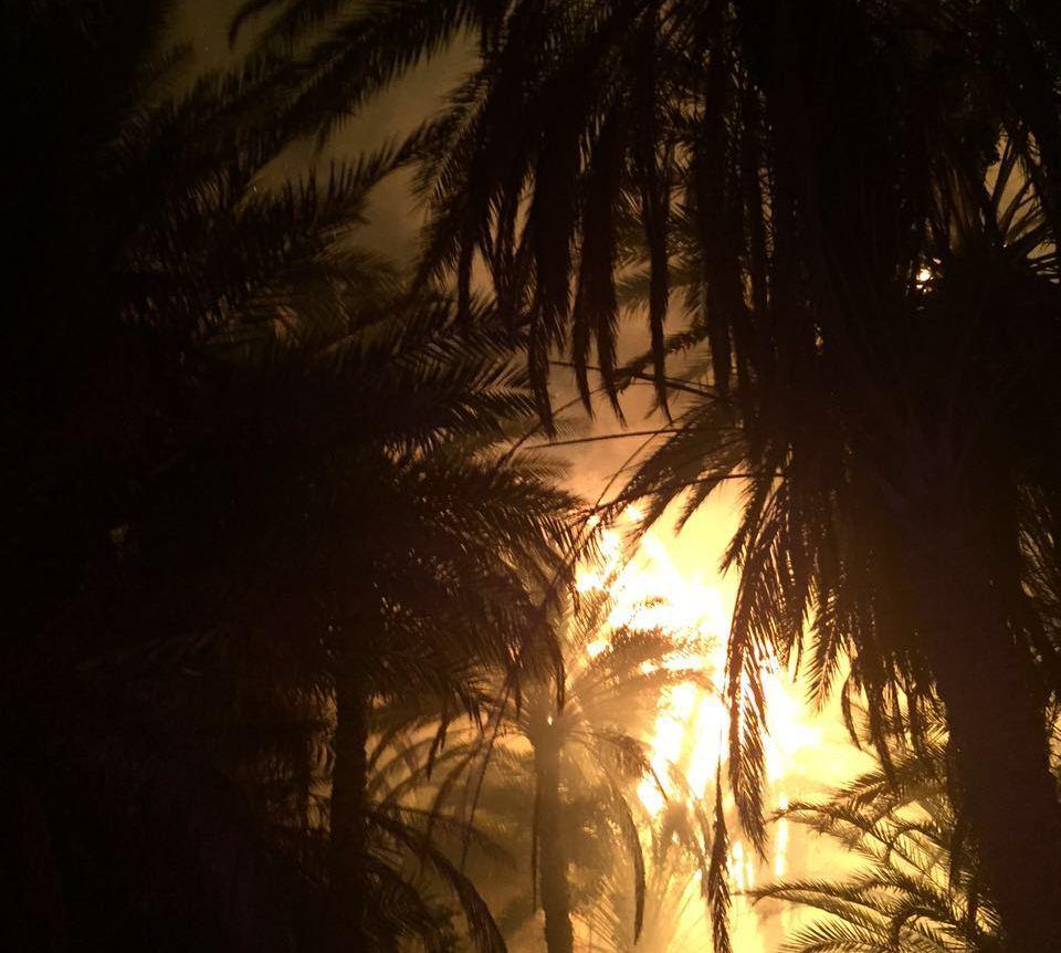 النيران تلتهم خمس مزارع للنخيل بدومة الجندل (4)