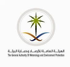 الأرصاد تُغرم وتغلق 44 منشأة مخالفة للاشتراطات البيئية