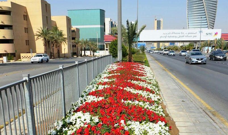 امانة الرياض تزين شوارع العاصمة بالزهور (2)