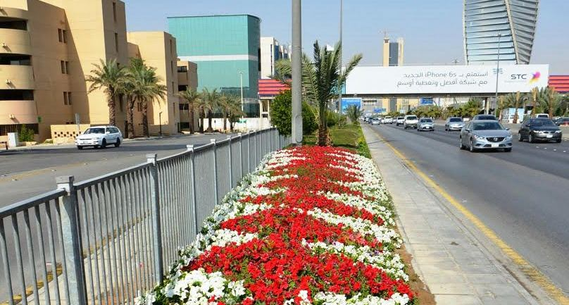 امانة الرياض تزين شوارع العاصمة بالزهور (4)