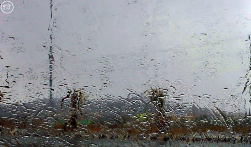 امطار الباحة (4)