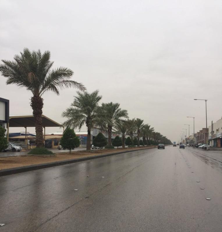 امطار الرياض3