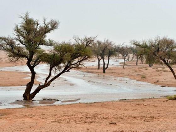 امطار عرعر - وادي - وديان - مطر
