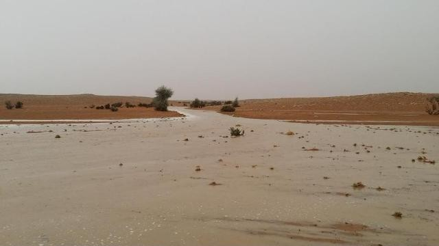 امطار-غزيرة-الى-متوسطة-على-معظم-محافظات-الرياض (3)