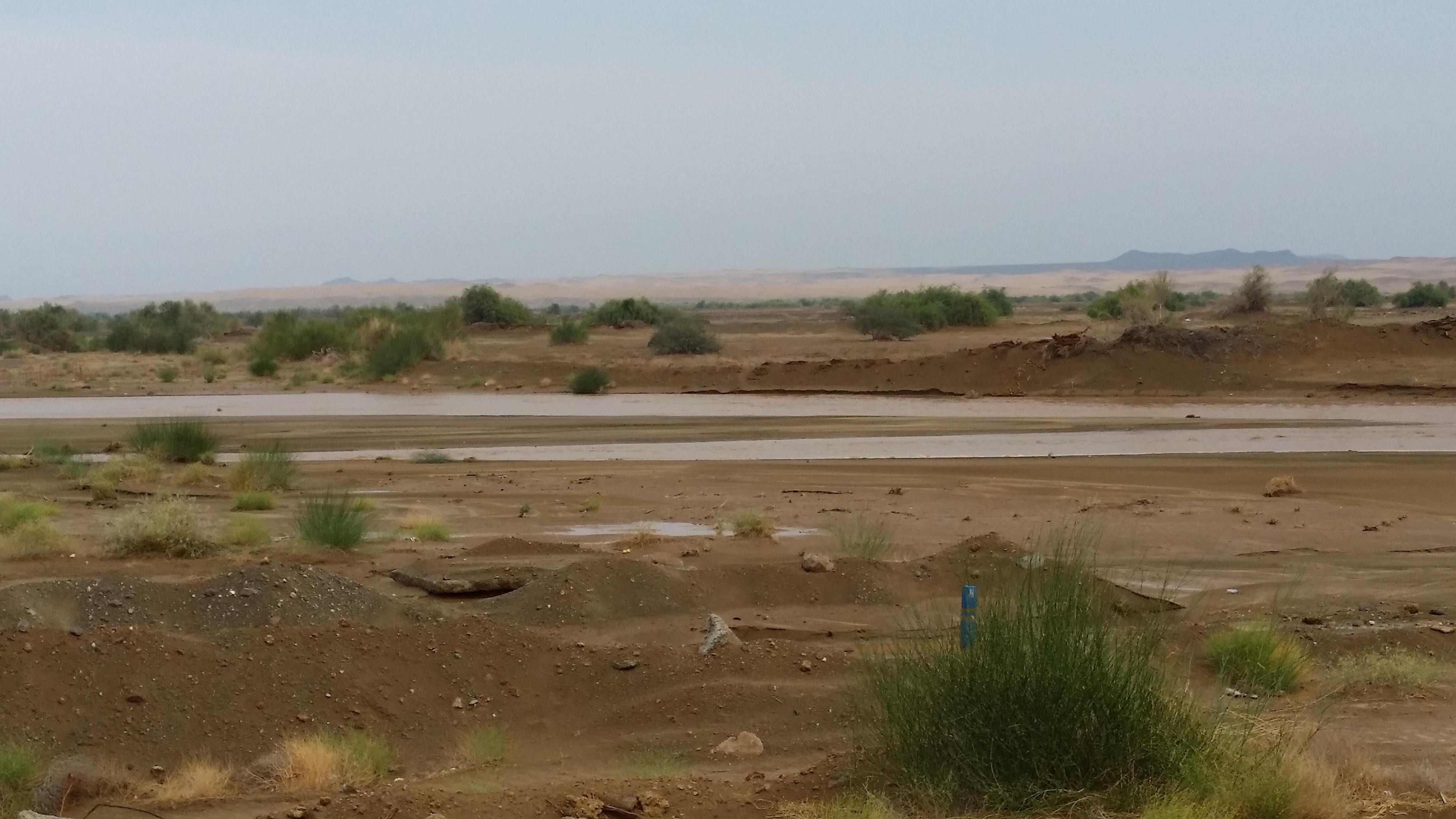 امطار غزيرة تلطف أجواء ساحل عسير (9)