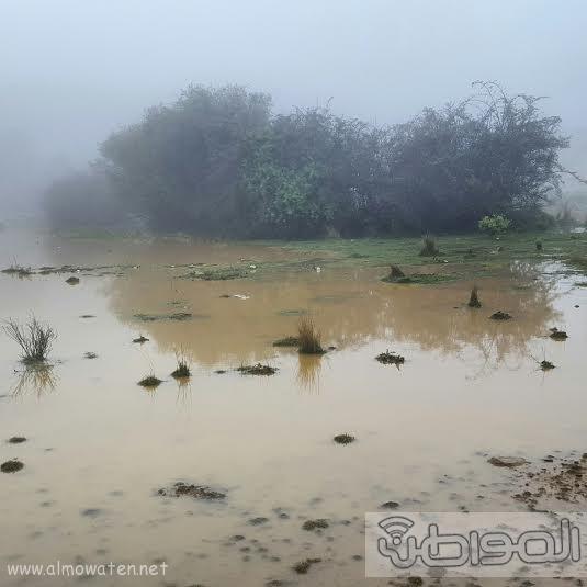 امطار قرى بلحمر بعسير6