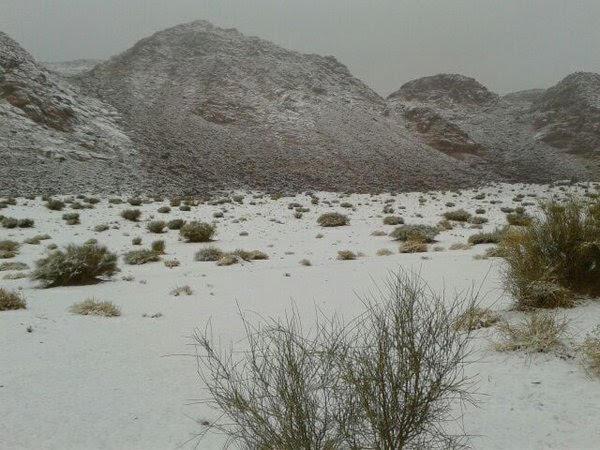 امطار-وثلوج-بتبوك (1)