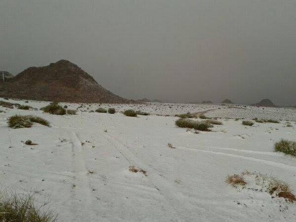 امطار-وثلوج-بتبوك (5)