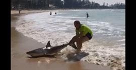 شاهد.. رجل ينقذ قرشًا على الشاطئ بسحب ذيله بيديه العاريتين - المواطن