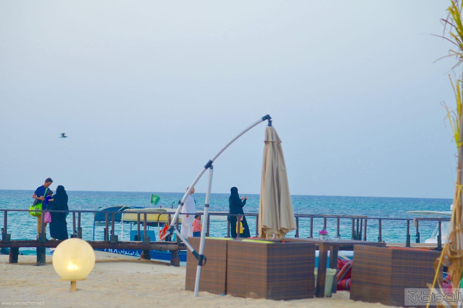 اول جزيرة يتم تهيئتها للسياحة بالمملكة (1)