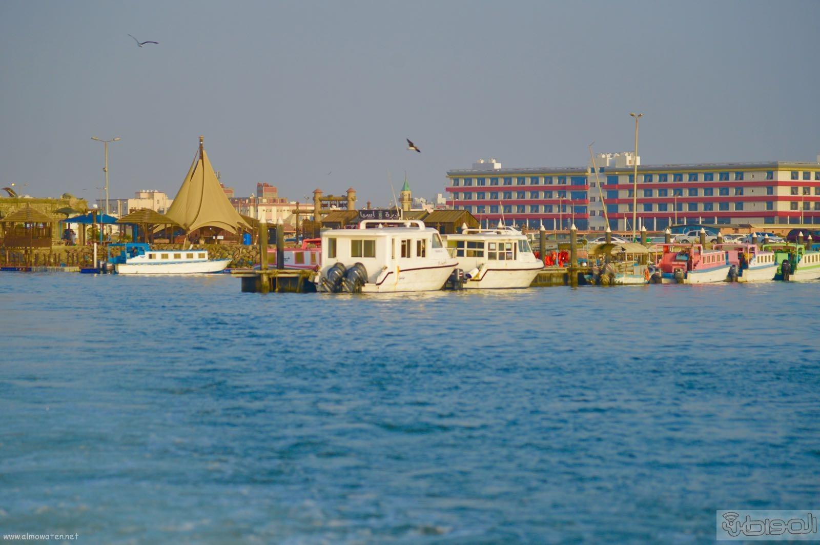 اول جزيرة يتم تهيئتها للسياحة بالمملكة (13)