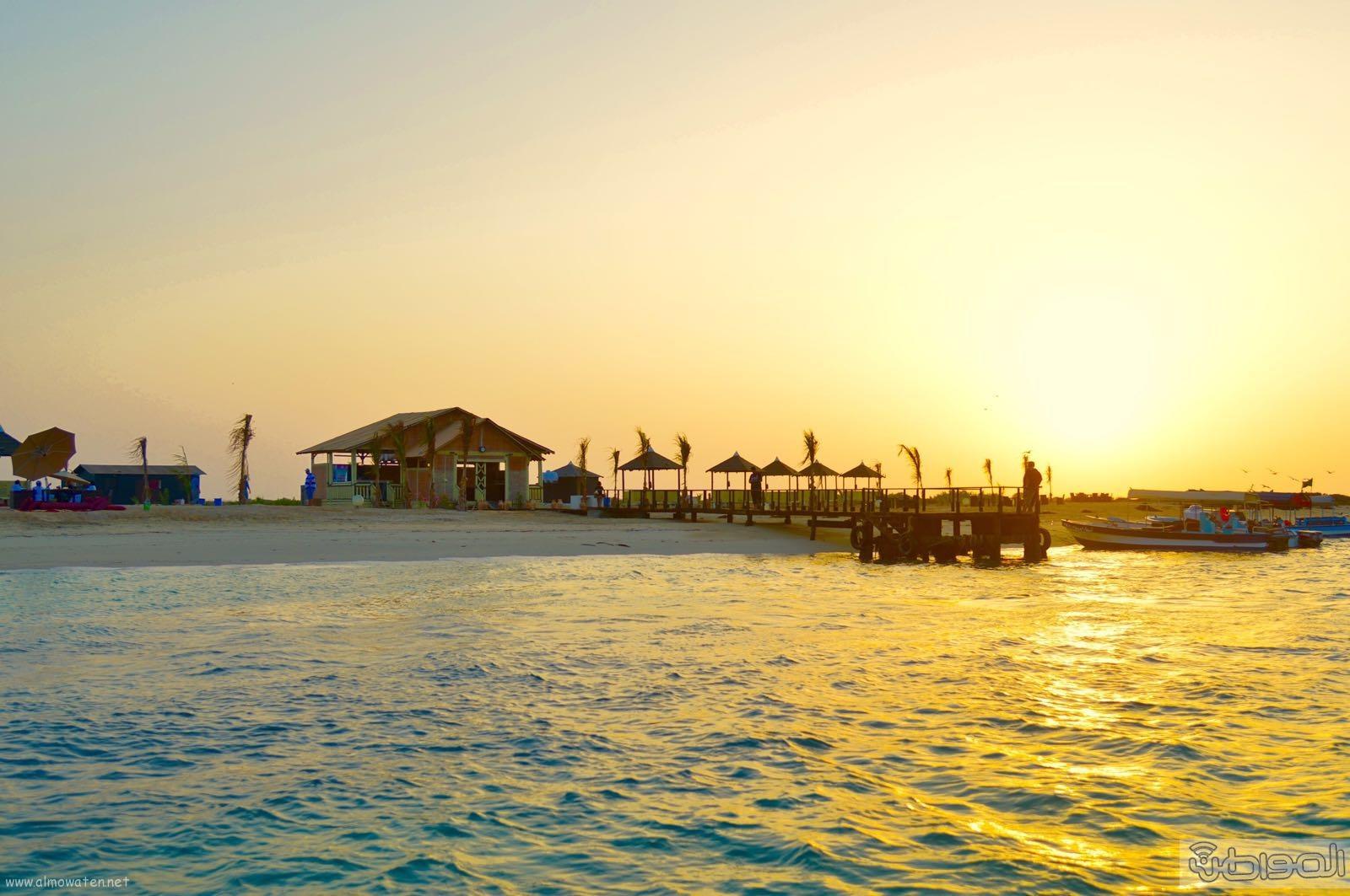 اول جزيرة يتم تهيئتها للسياحة بالمملكة (14)