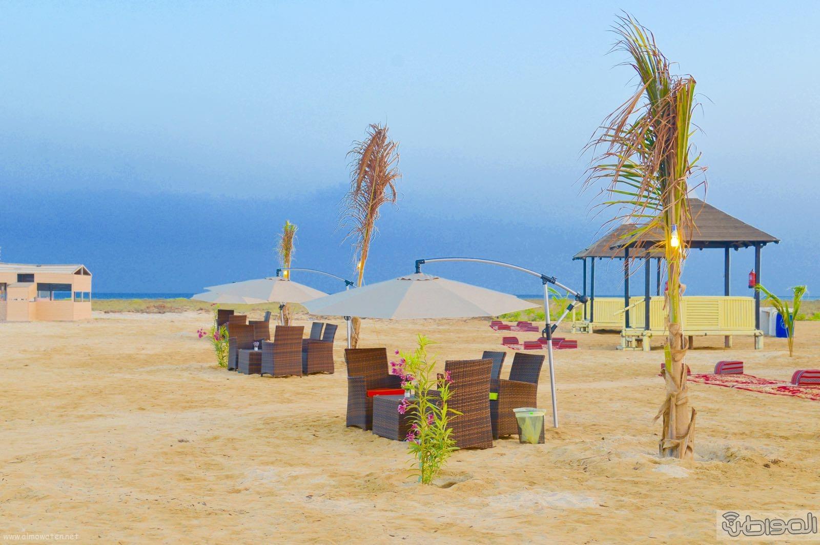 اول جزيرة يتم تهيئتها للسياحة بالمملكة (16)