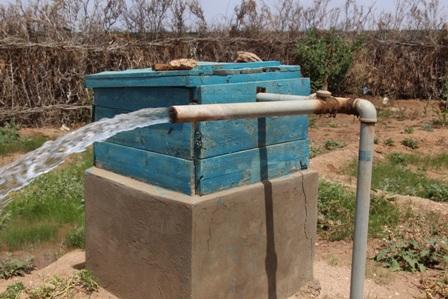 بئر الصومال (2)