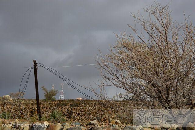 بالصور.. تساقط الأعمدة واللوحات في سرح #النماص بسبب الأمطار والرياح (2)