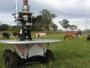 بالفيديو.. أستراليا تتجه للاستعانة بالروبوتات لرعي قطعانها