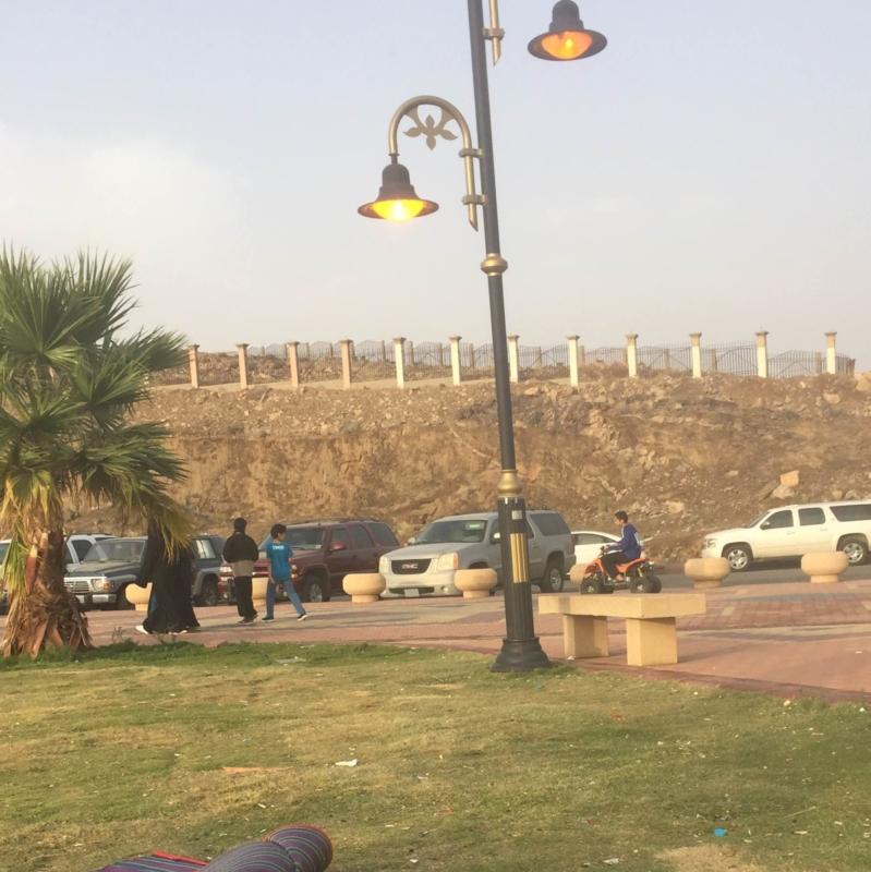 بحديقه المحاله  (1)