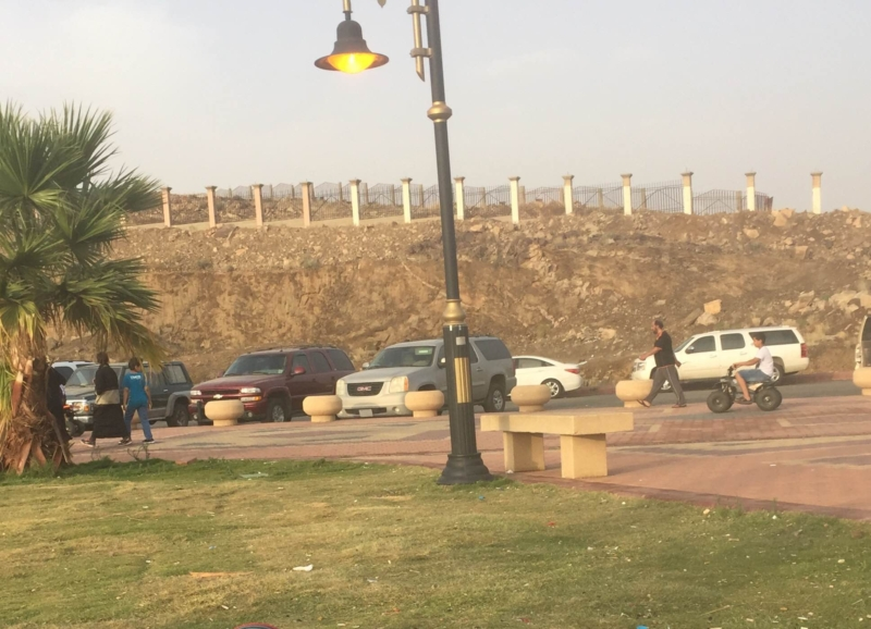 بحديقه المحاله (2)