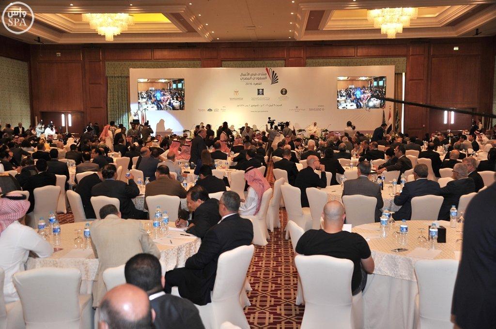 بدء أعمال منتدى فرص الأعمال السعودي المصري بالقاهرة (12)