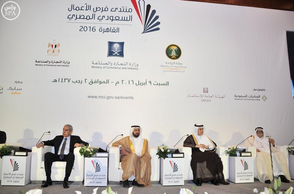 بدء أعمال منتدى فرص الأعمال السعودي المصري بالقاهرة (9)