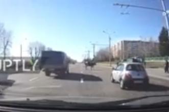 بالفيديو.. لحظة سقوط بقرة من شاحنة مسرعة - المواطن