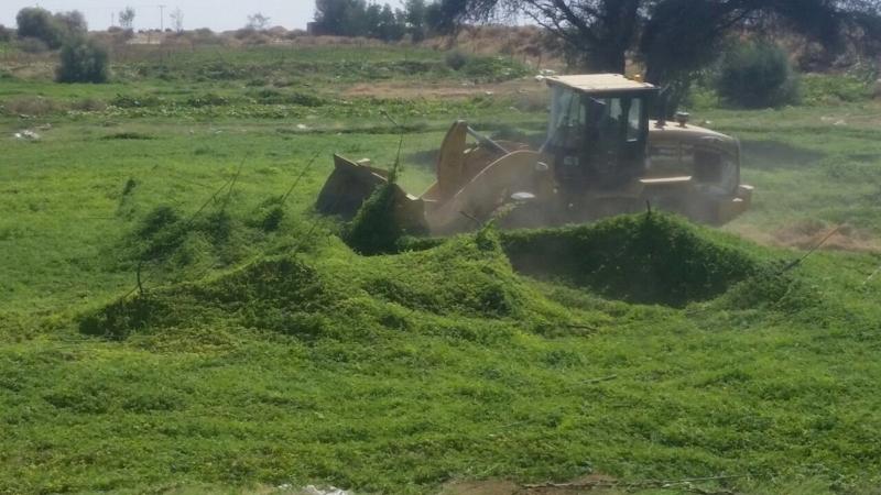 تجريف مزارع بالطاف (2)