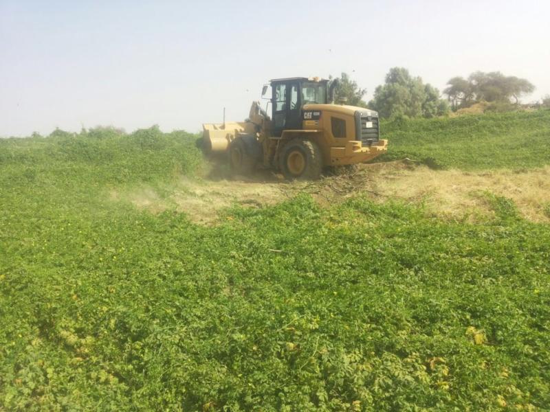 تجريف مزارع بالطاف (3)