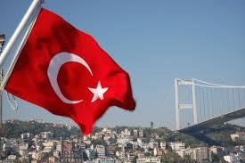 تركيا استثمار