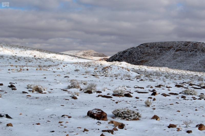 تساقط الثلوج على تبوك (1)