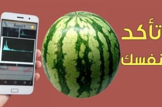بالفيديو .. تطبيق هاتفي يساعدك على شراء البطيخ - المواطن