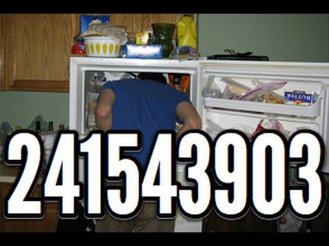 تعرف على سر الرقم 241543903 في بحث قوقل