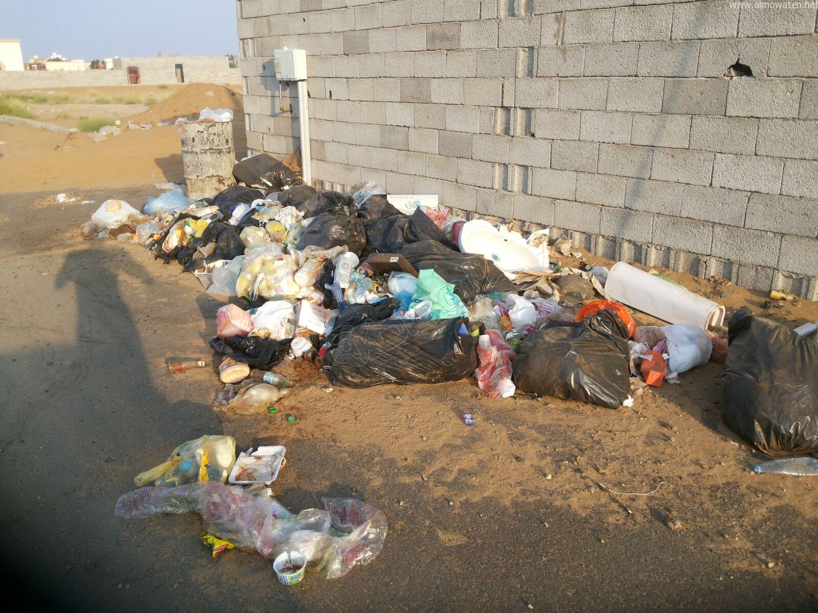 تكدس النفايات في كربوس #جازان منذ شهرين (4)