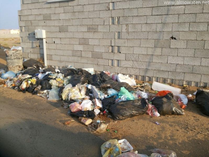 تكدس النفايات في كربوس #جازان منذ شهرين (7)