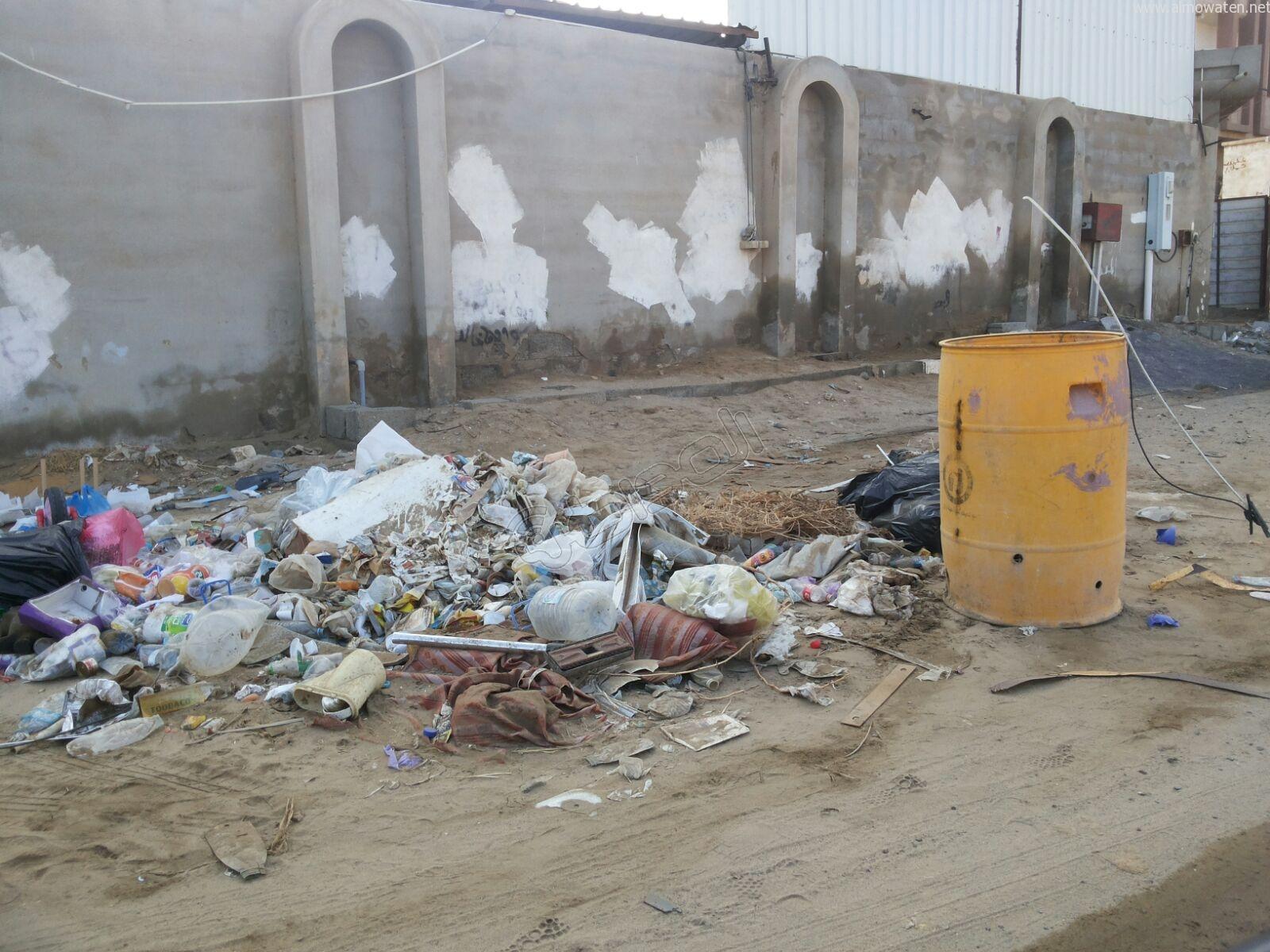 تكدس النفايات في كربوس #جازان منذ شهرين (8)