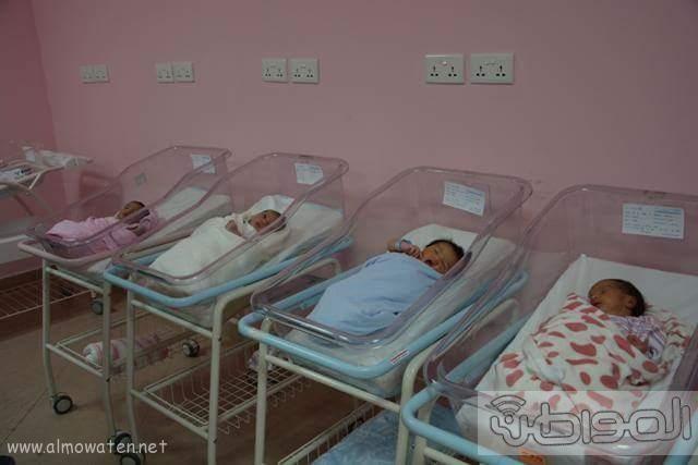 تكريم أميرة ونجود منقذتا أطفال حضانة جازان (3)