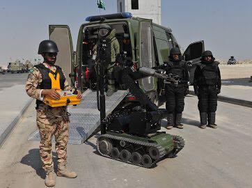 تمرين أمن الخليج العربي 19