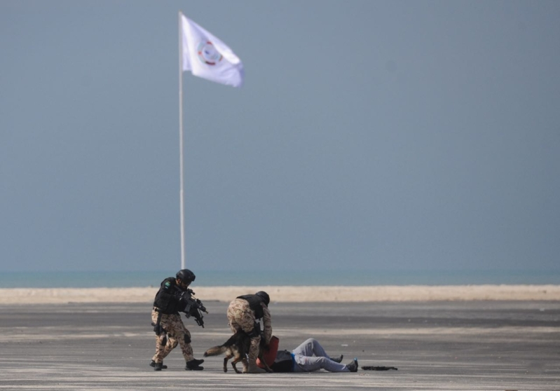 تمرين أمن الخليج العربي 3