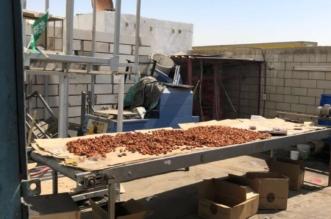 بالصور.. إغلاق مصنع في جدة بسبب التمور التالفة - المواطن
