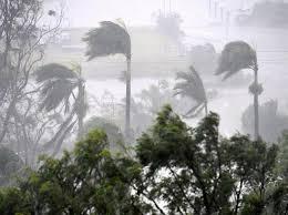 إعصار الفلبين يقتل 8 ويرغم عشرات الآلاف على مغادرة منازلهم - المواطن
