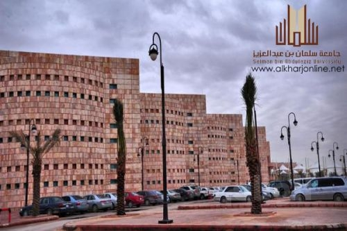جامعة سلمان