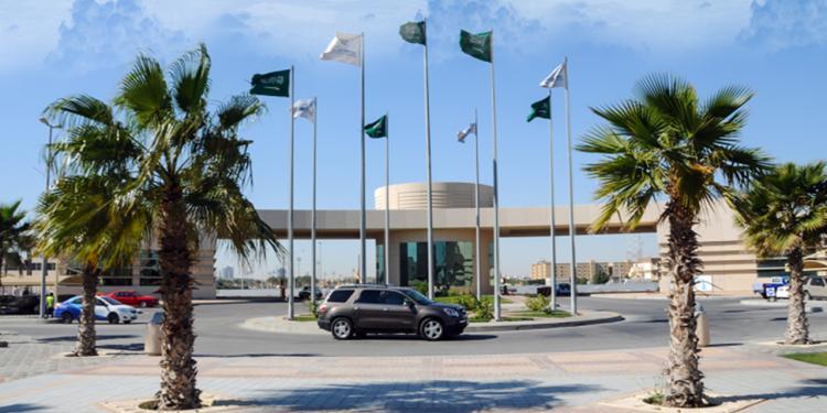 وظائف أكاديمية للجنسين في جامعة الإمام عبد الرحمن بن فيصل
